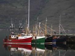 Fishing Boats Ullapool